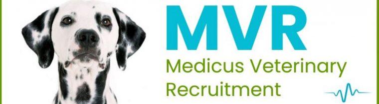 Medicus Vet Recruitment - MVR